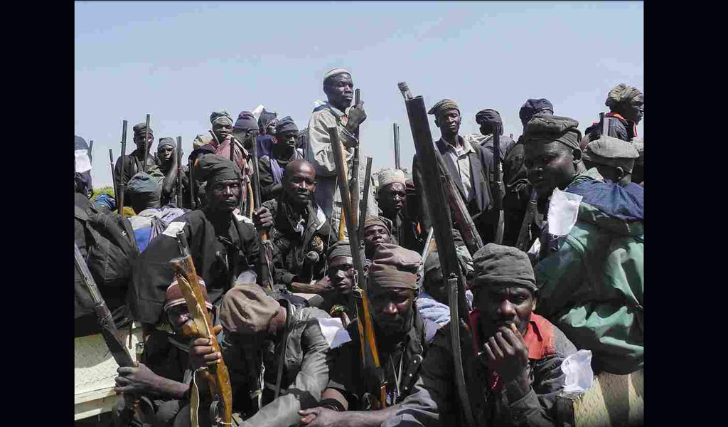 Village head, 14 others killed in Nigerien Boko Haram attack