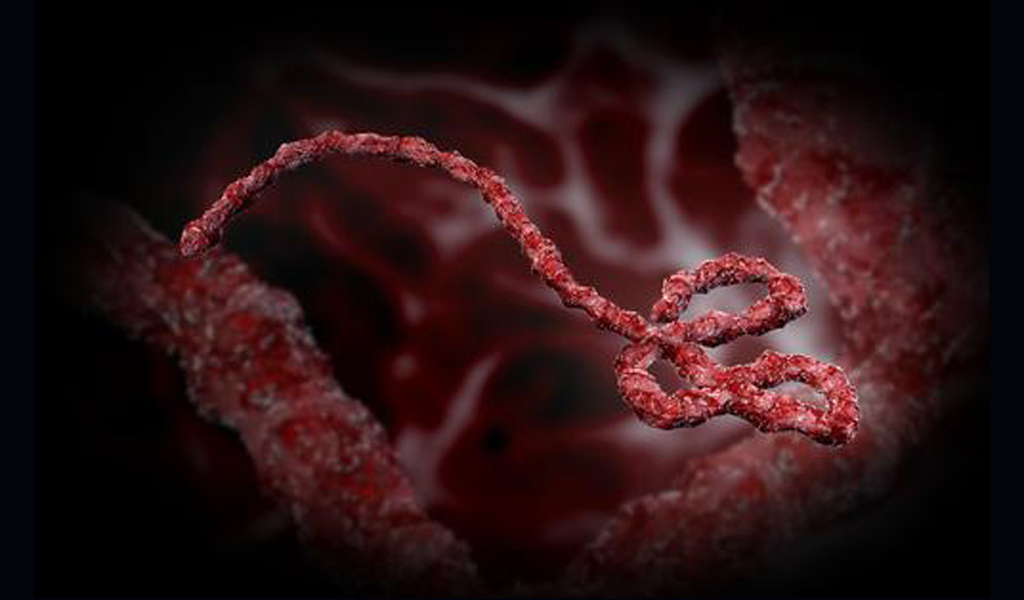 No Ebola in Cross River –Govt